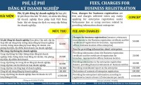 21 TYPES OF TAXES, FEES AND CHARGES THAT A FORREIGN ENTERPRISE MAY PAY