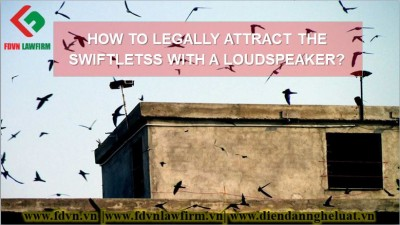 HOW TO LEGALLY ATTRACT THE SWIFTLETSS WITH A LOUDSPEAKER?