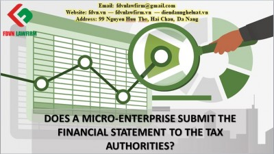 DOES A MICRO-ENTERPRISE SUBMIT THE FINANCIAL STATEMENT TO THE TAX AUTHORITIES?