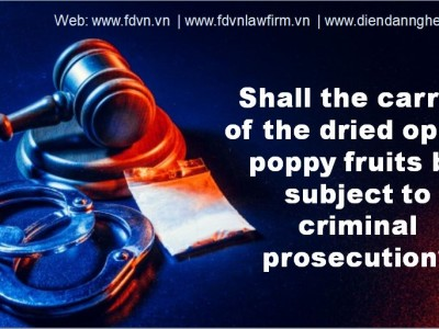 Shall the carrier of the dried opium poppy fruits be subject to criminal prosecution?